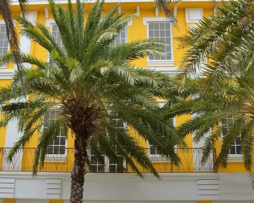 CASA Main Street Yellow